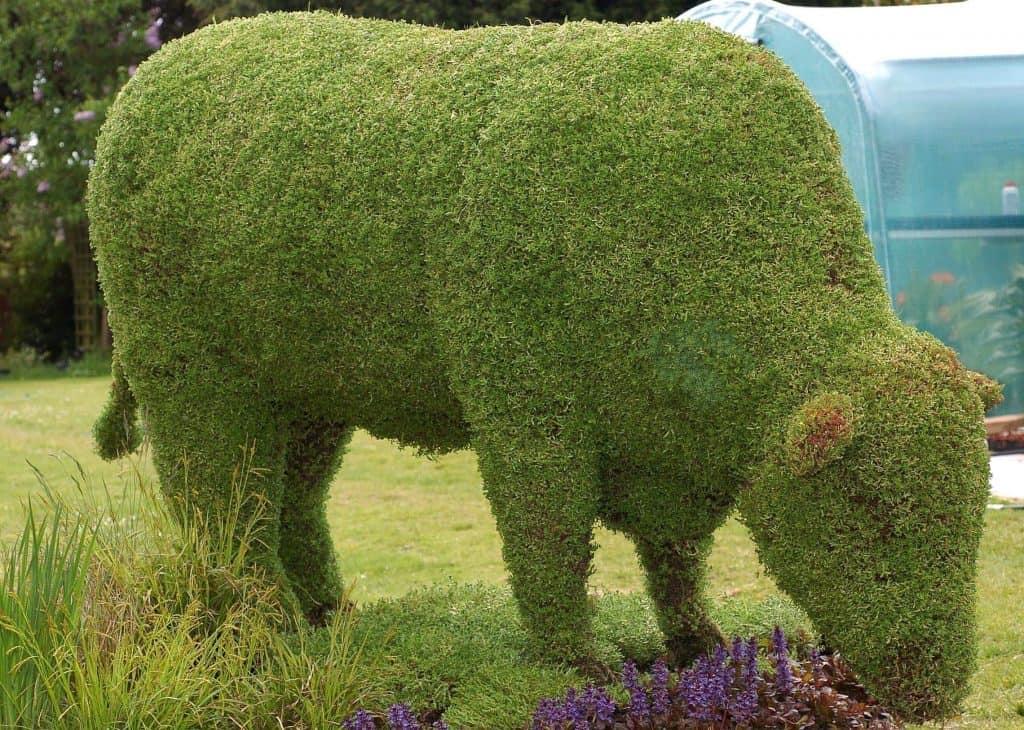 Topiary10.JPG