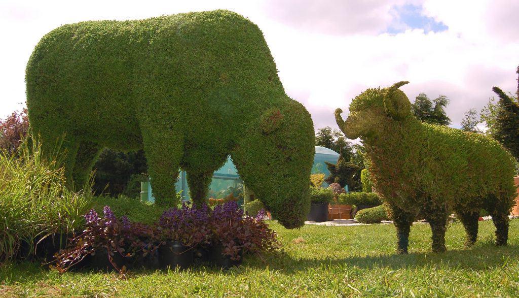 Topiary11.JPG