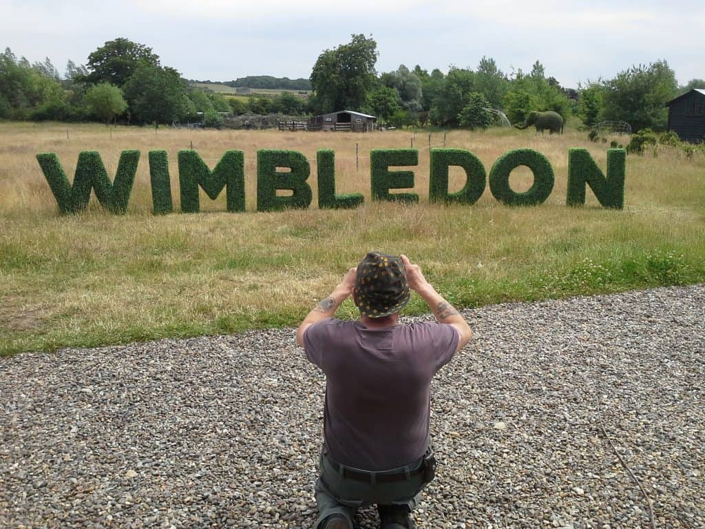 Wimbledon Topiary Letters