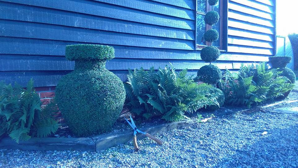 Boxwood topiary Urns and PomPom tower in Fern Bed