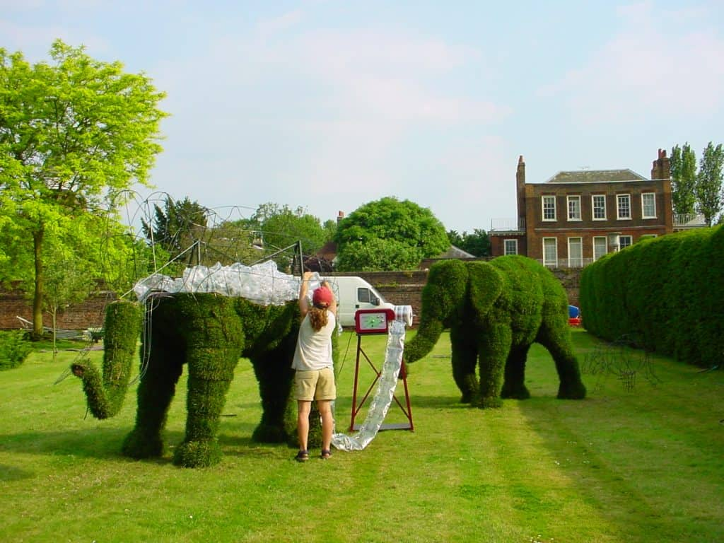 Topiary Art Designs Custom And Bespoke Feature Topiaries