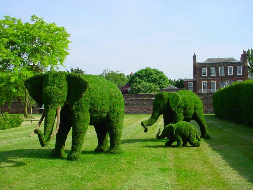 Elephant Family (3)
