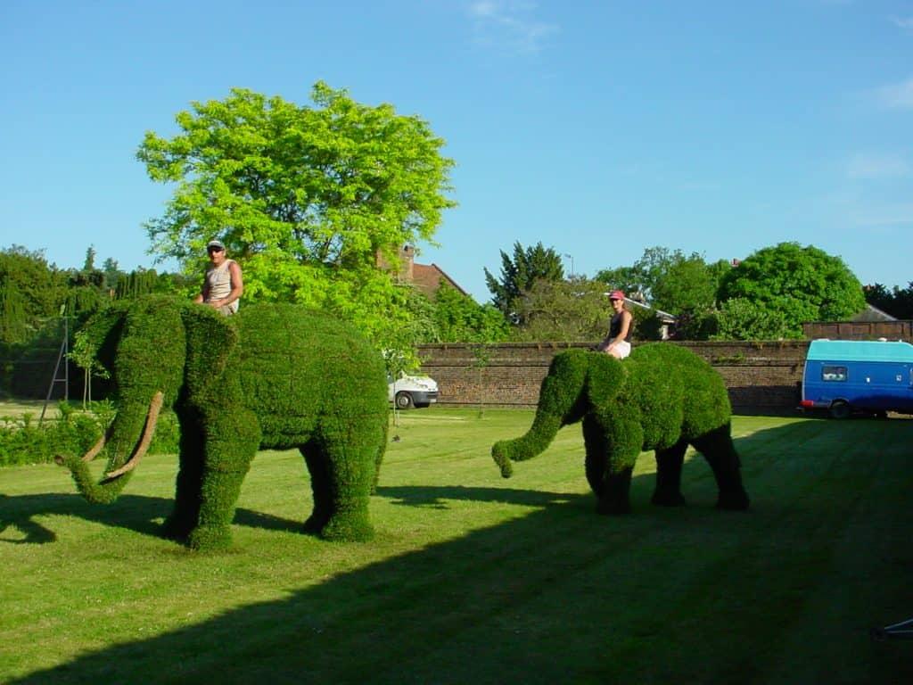 Elephant family (2)