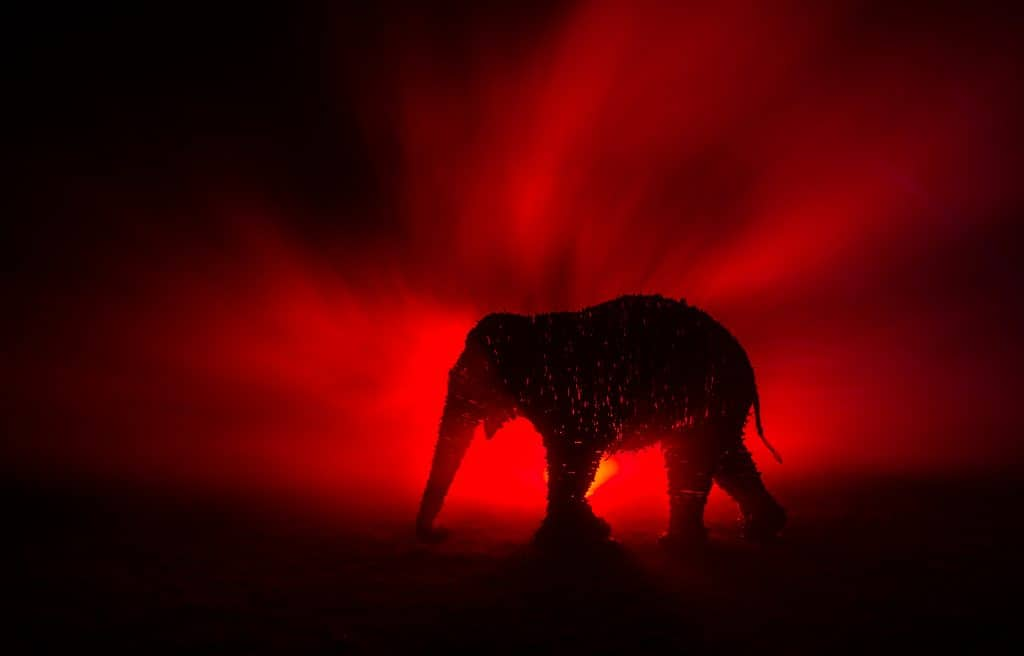 Elephant Stage props sculpture in Red mist