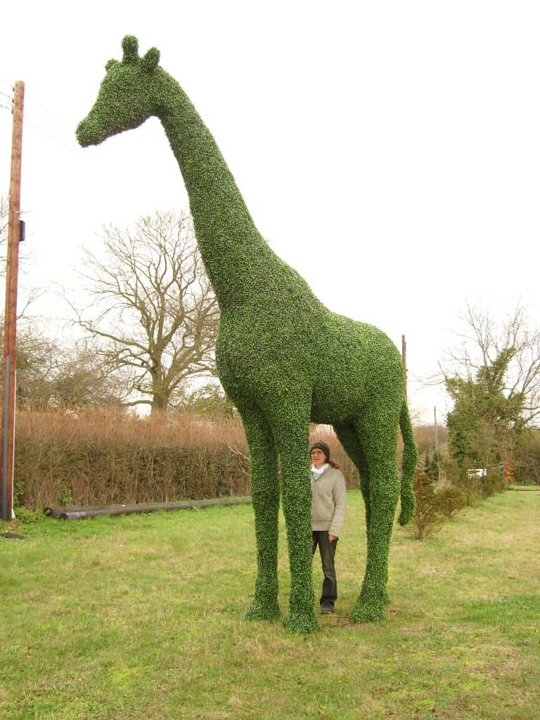 Giraffe Artificial Topiary (2)