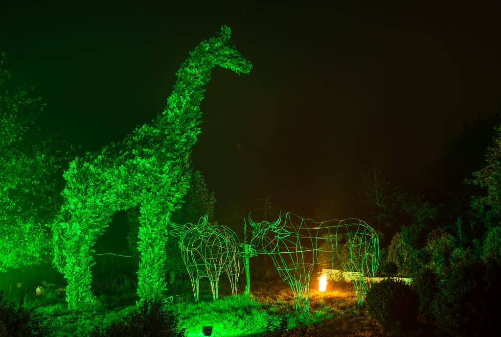 Giraffe Stage Prop and lighting effects