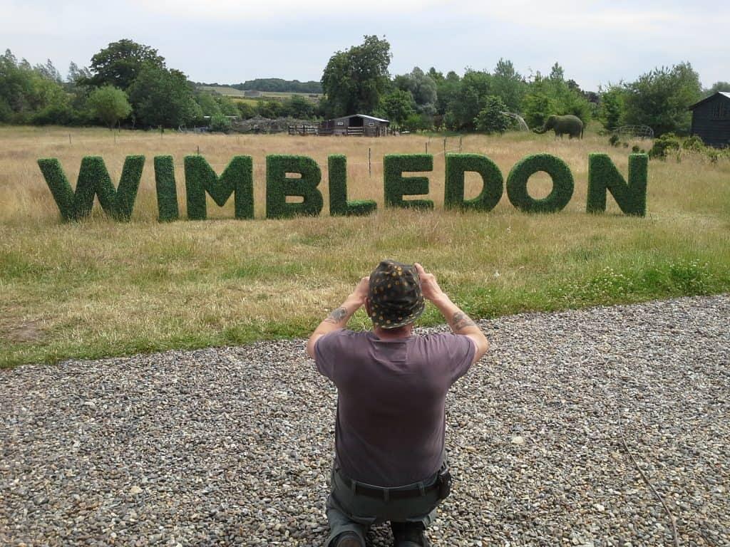 Tennis Wimbledon Lettering