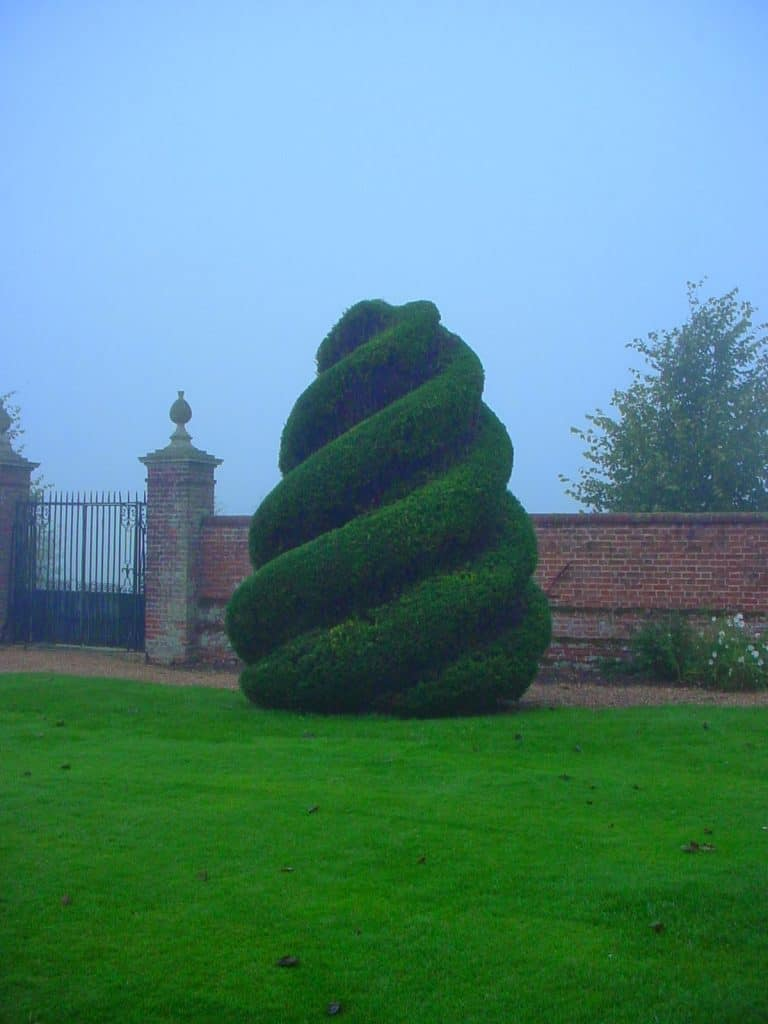 Topiary Ice cream spiral
