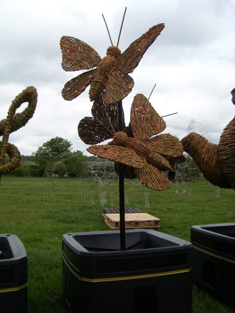 Willow Butterflies