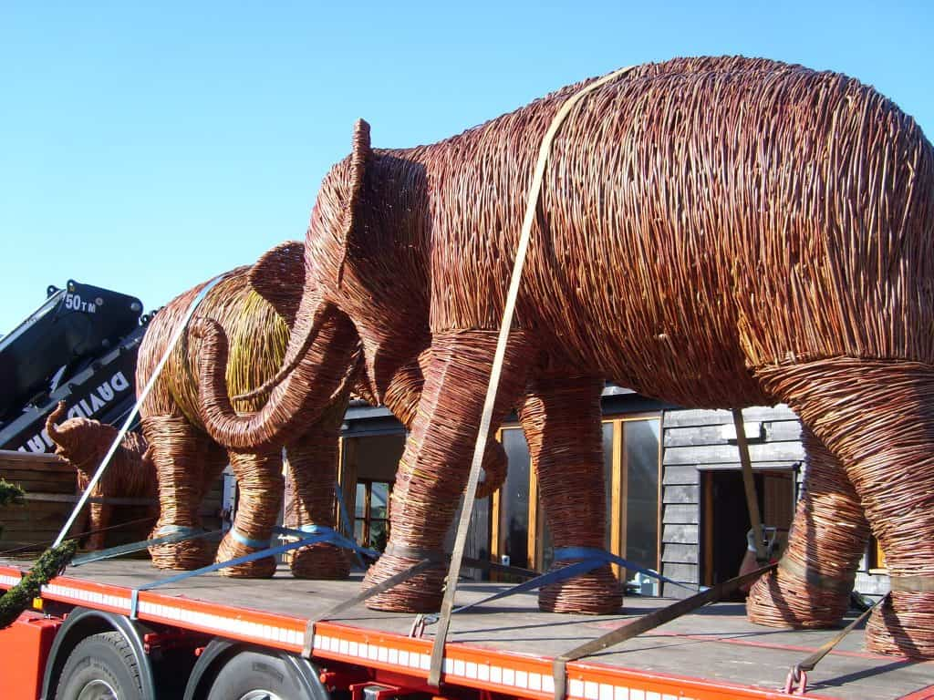 Willow elephants strapped down on lorry