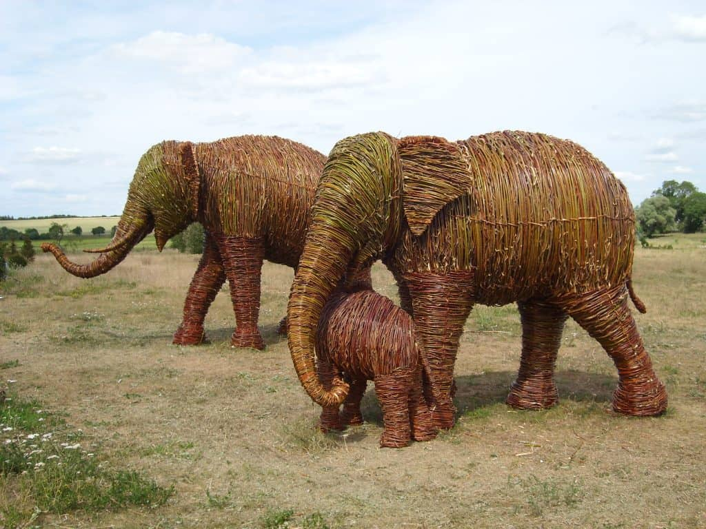 Willow Smithsonian Elephants