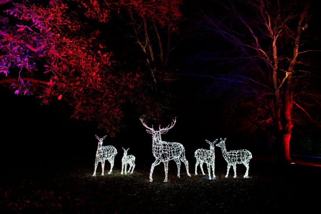 Christmas Deer Herd Sculptures with lights